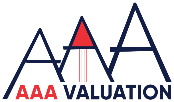 AAA Valuation Professionals LLP
